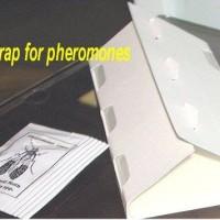 delta_trap